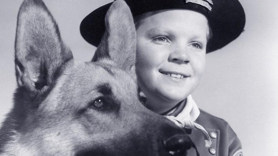 """Lee Aaker em pôster da série """"As Aventuras de Rin Tin Tin"""", exibida originalmente na década de 1950 - Reprodução"""