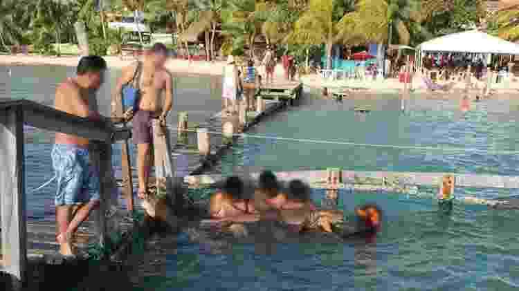 Na Isla Mujeres, restaurante deixa visitantes tirarem tubarão da água, o que pode matar o animal - Reprodução/Instagram