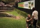 Em zoo da Austrália, homem pede a amada em casamento na jaula do crocodilo - Divulgação/Australia Reptile Park