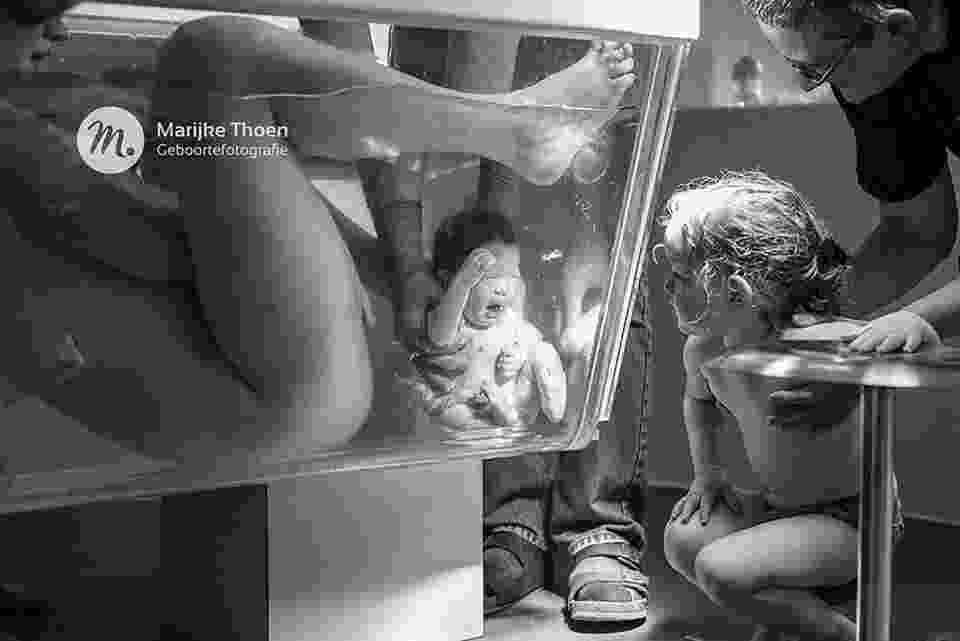 A imagem vencedora geral do concurso mostra o momento em que dois irmãos se conhecem - Reprodução/Marijke Thoen Geboorte