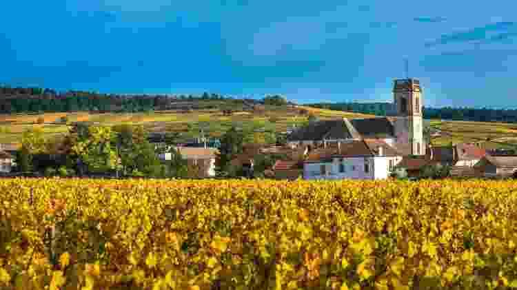 Na Borgonha, vinhedos e lindas vilas podem ser explorados em passeios de bicicleta - javarman3/Getty Images/iStockphoto