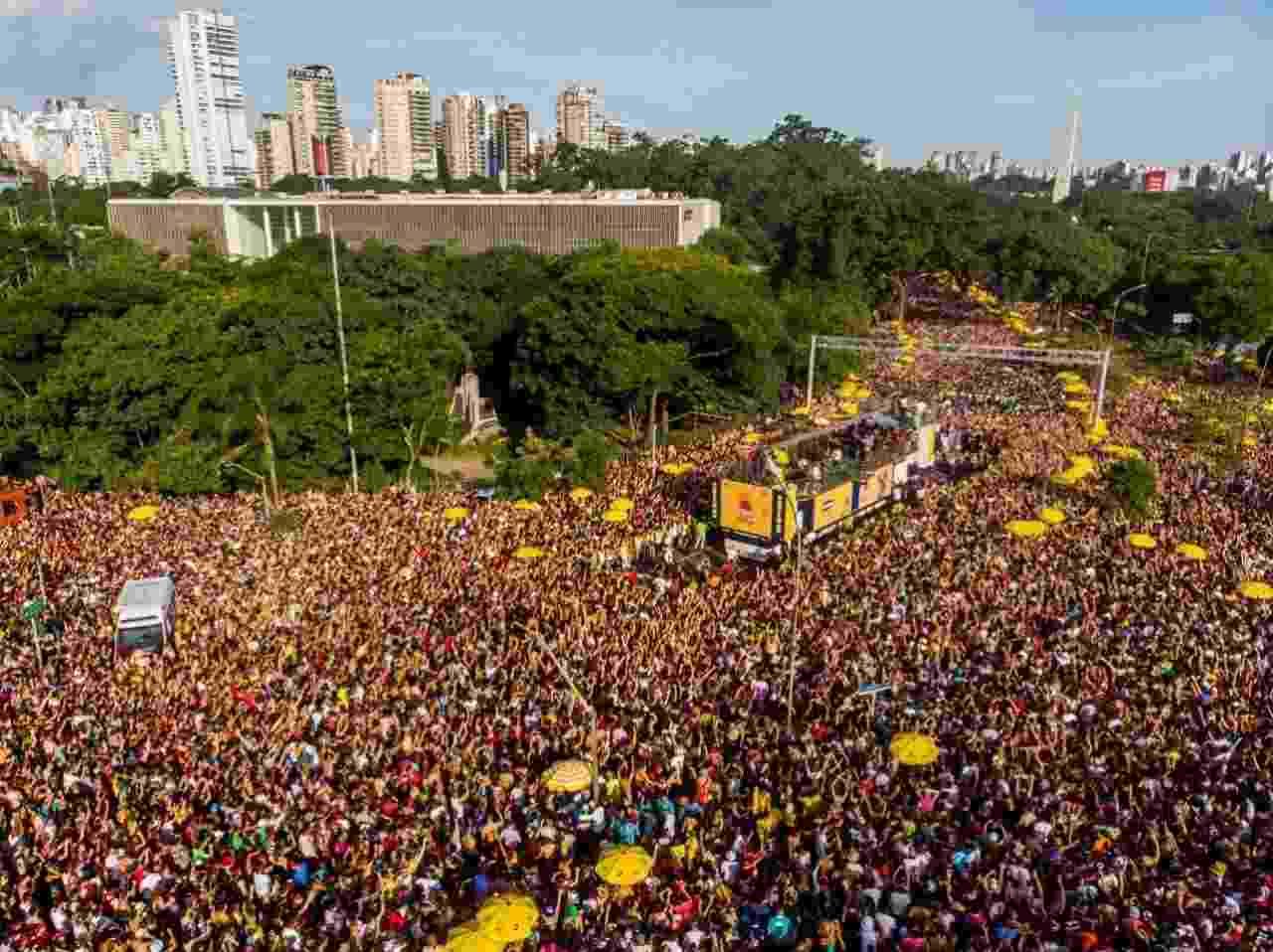 Foliões se reúnem na região do Ibirapuera para o bloco Bicho Maluco Beleza - Edson Lopes Jr./UOL