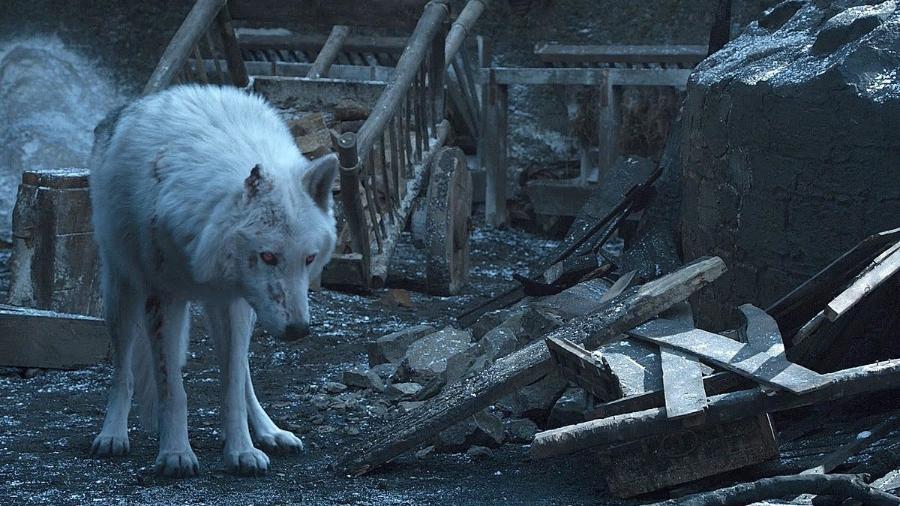 """O lobo Fantasma em cena da oitava temporada de """"Game of Thrones"""" - Reprodução"""