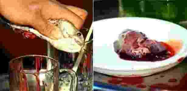 O apresentador já provou coração e sangue de cobra  - Reprodução/Youtube - Reprodução/Youtube
