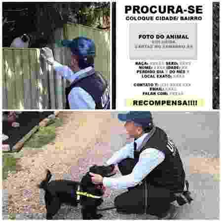 O detetive de animais faz buscas, elabora cartazes e anda com cão farejador - Divulgação - Divulgação