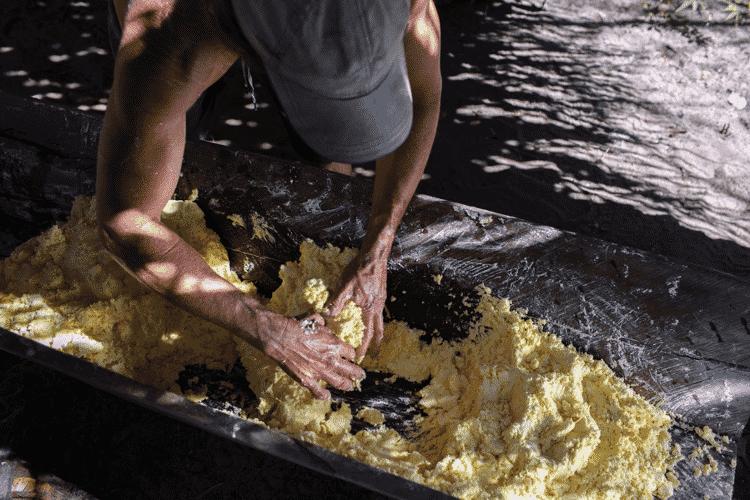 A produção de farinha de mandioca é uma das bases da cultura dos geraizeiros, tanto do ponto de vista alimentar quando econômico - Marizilda Kruppe/Greenpeace - Marizilda Kruppe/Greenpeace