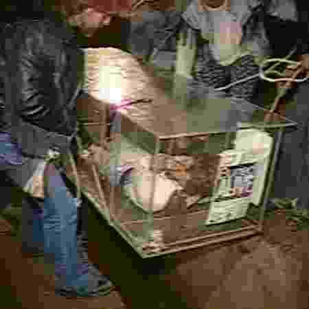 Joe Burrus tentou escapar de caixão, mas acrílico cede ao peso do concreto e o matou - Reprodução