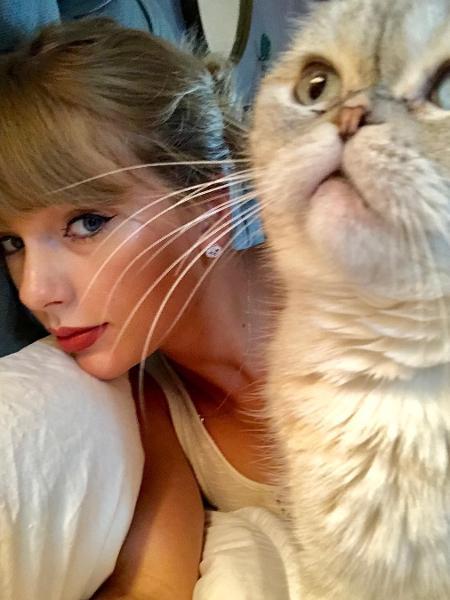 Taylor Swift e sua gata Olivia Benson - Reprodução/Instagram