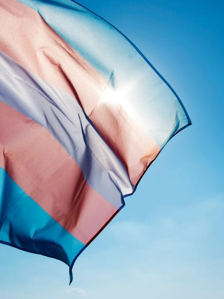 Bandeira trans - Getty Images