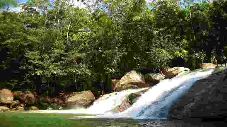 Estação Ecológica Jureia-Itatins (SP) - Divulgação/Fundação Ambiental - Divulgação/Fundação Ambiental