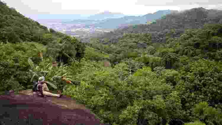 Parque Nacional da Tijuca  - Rafael Duarte/ICMBio9 - Rafael Duarte/ICMBio9