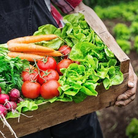 Pessoas que comem alimentos orgânicos tendem a ser mais conscientes com sua saúde - iStock