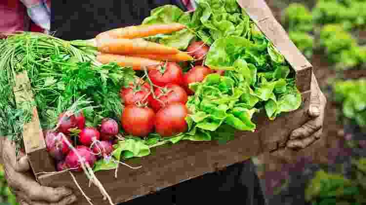 Os orgânicos são seguros e nutritivos, só não existem justificativas científicas ou éticas que mostrem que são melhores - iStock