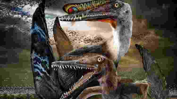 dinossauros - Divulgação - Divulgação