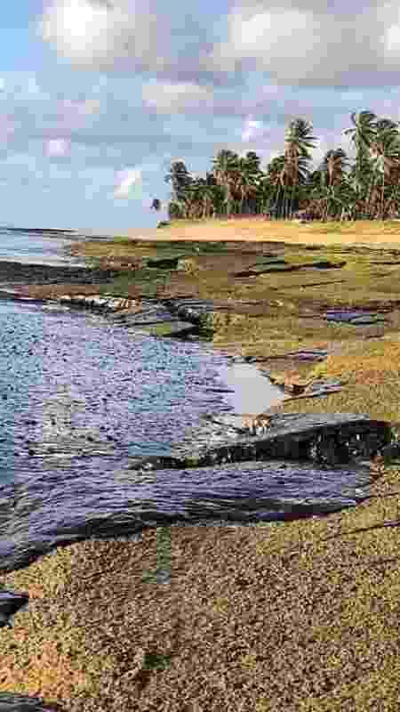 Na praia, no Pernambuco: óleo por todos os lados - iStock - iStock