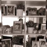 Zilu Carmago tem bastante porta-retrato em estante no apartamento em Miami - Reprodução/ Instagram/ @zilucamargooficial