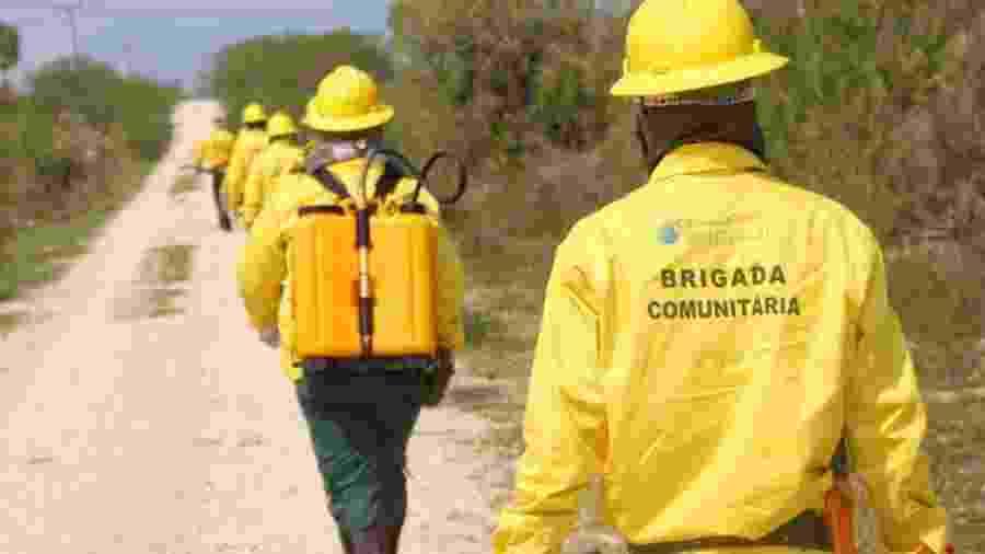 Brigadas voluntários em treinamento para treinamento contra queimadas no Pantanal - Reprodução/ECOA