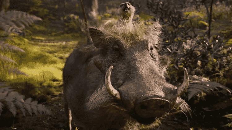 Timão e Pumba em cena de O Rei Leão - Reprodução - Reprodução