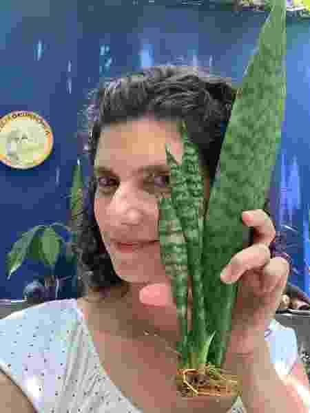 Sabrina Jeha e uma de suas Espadas-de-São-Jorge - Arquivo pessoal - Arquivo pessoal