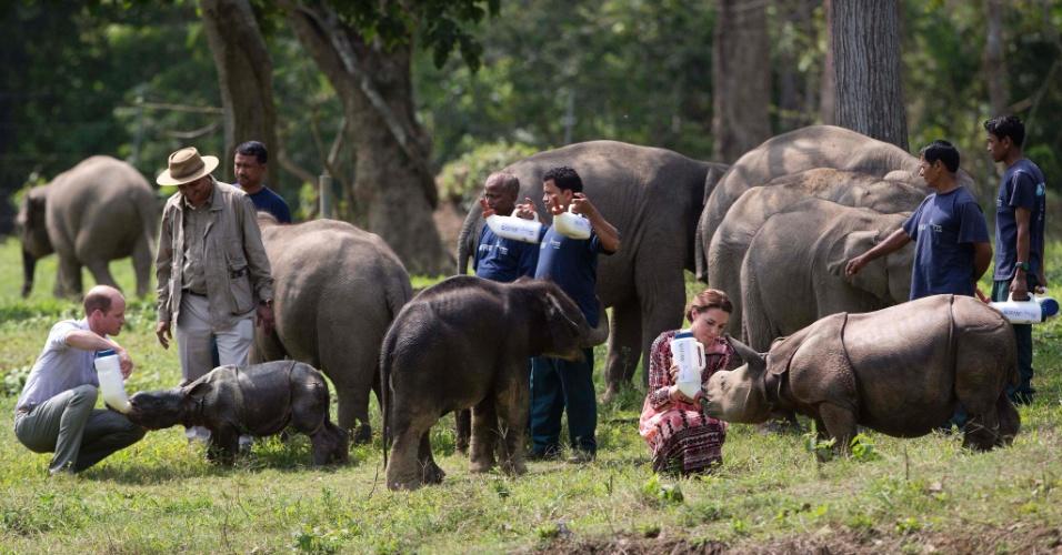 13.abr.2016 - Príncipe William e Kate Middleton alimentam rinocerontes durante visita ao Parque Nacional Kaziranga, na Índia
