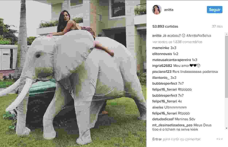 """Anitta comemora 24 anos com festa com o tema """"na selva"""" - Reprodução/Instagram"""