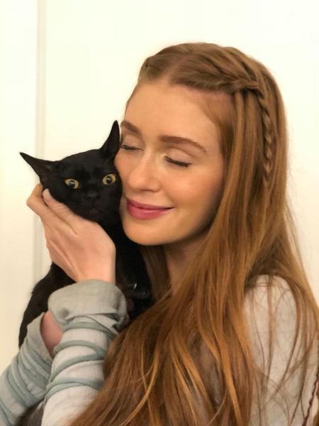 """Marina Ruy Barbosa conhece o gato com quem contracenará em """"O Sétimo Guardião"""" - Reprodução/Instagram/aguinaldofsilva"""
