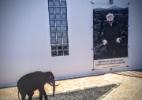 Personalidade de José Saramago está nos detalhes de sua casa - Luiza Sahd/UOL
