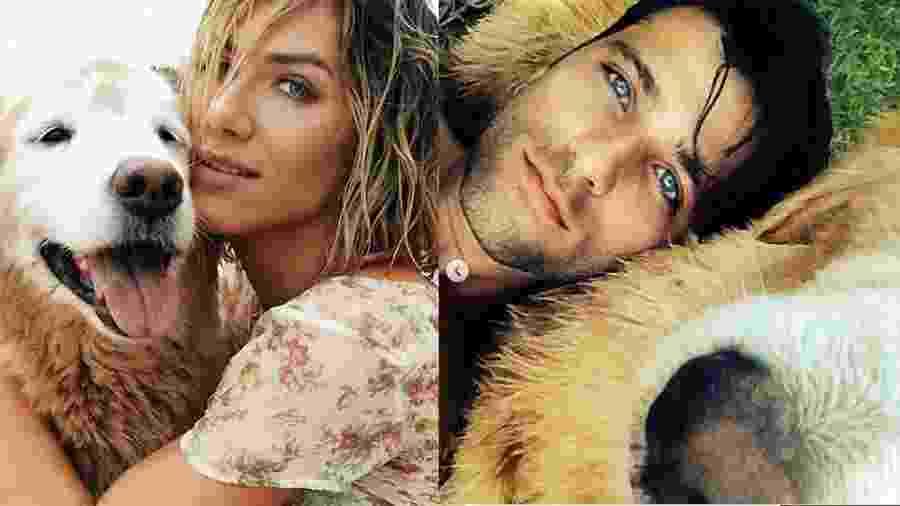 Giovanna Ewbank e Bruno Gagliasso com o cachorro Zeca - Reprodução/Instagram