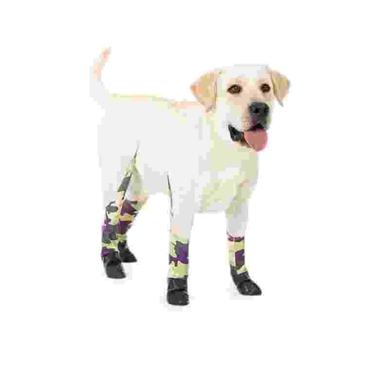 Coleção de leggings para cachorros da Walkee Paws - Divulgação