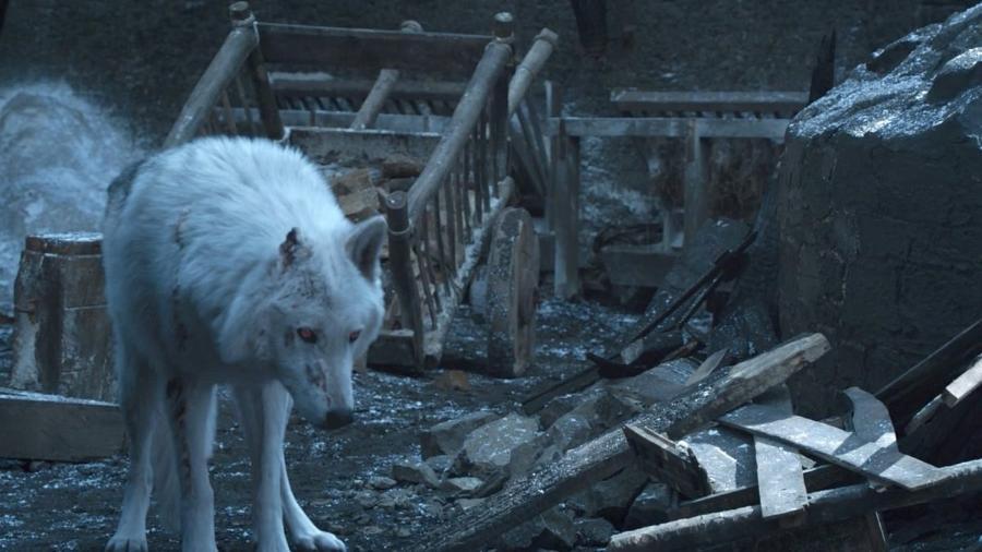 """O lobo Fantasma em """"Game of Thrones"""" - Reprodução/Twitter"""