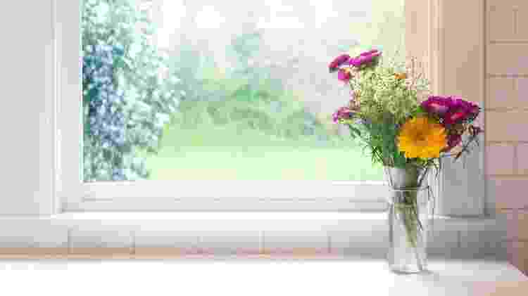 Vaso com flores - Getty Images/iStockphoto - Getty Images/iStockphoto
