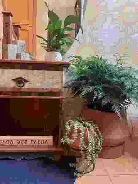 Plantas também ajudaram a dar nova cara ao cômodo - Arquivo pessoal - Arquivo pessoal