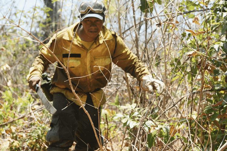 Brigadista na Terra Indígena Porquinhos, Maranhão - Felipe Werneck/Ibama - Felipe Werneck/Ibama