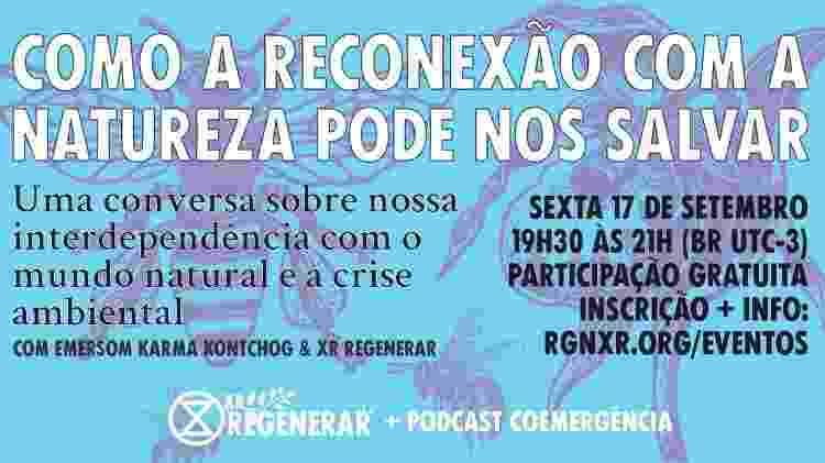 Coluna Mente Natural - Divulgação - Divulgação