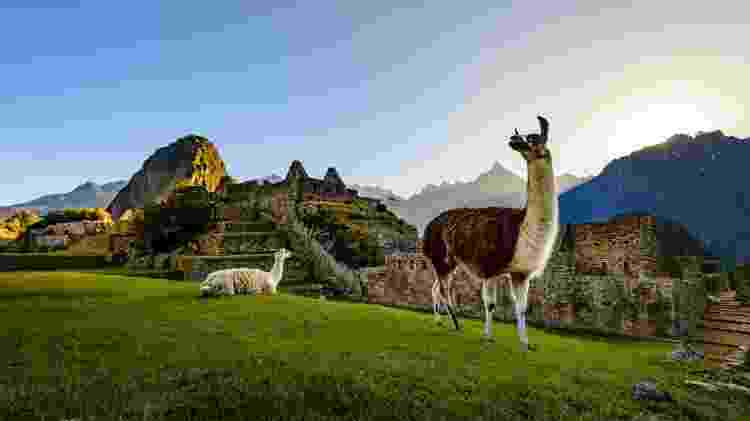 Machu Picchu - Getty Images - Getty Images