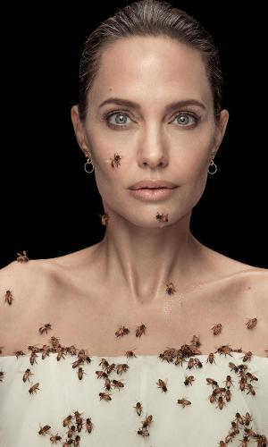 Angelina Jolie fica três dias sem banho para posar com abelhas