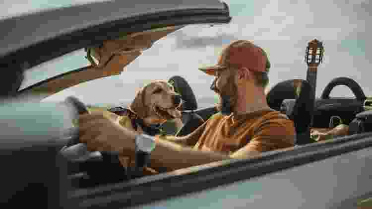 Viagem com pets - iStock - iStock