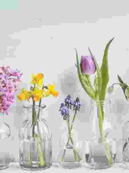 Flores cultivadas em água - Getty Images/iStockphoto - Getty Images/iStockphoto