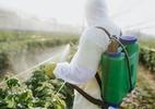 23% de alimentos analisados têm agrotóxicos acima do limite ou proibidos - Getty Imagens