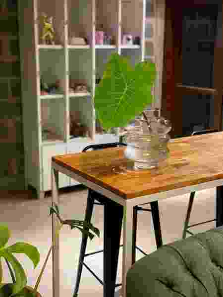 Decoração com plantas em meio a marcenaria - Arquivo Pessoal - Arquivo Pessoal