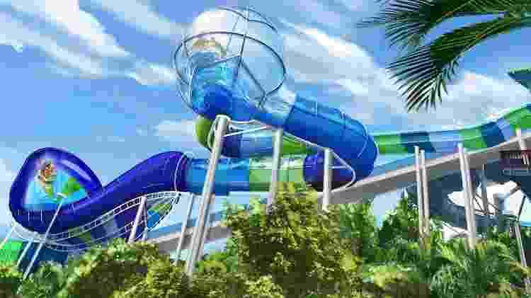 Imagem promocional da atração Ray Rush, do parque Aquatica, em Orlando - Divulgação/Visit Orlando - Divulgação/Visit Orlando