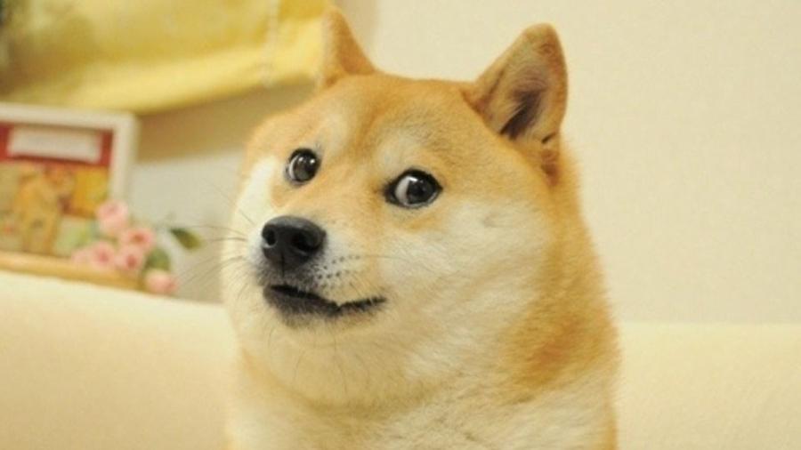 "Meme ""Doge"" - Reprodução/Twitter"