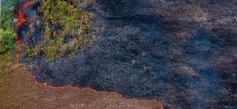 Incêndio em Rondônia em 2019.  - Vinicius Mendonça/Ibama.