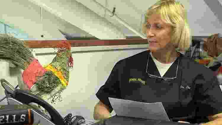 """""""Dra. Dee - A Veterinária do Alasca"""" - Animal Planet - Reprodução - Reprodução"""
