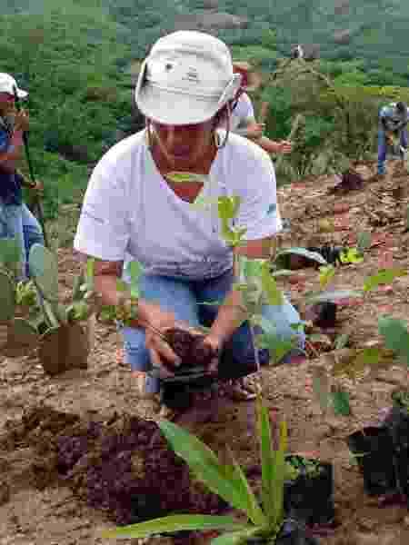 Sidinalia durante um mutirão de plantação de mudas em Tesouras, na Chapada do Lagoão - CPCD - CPCD