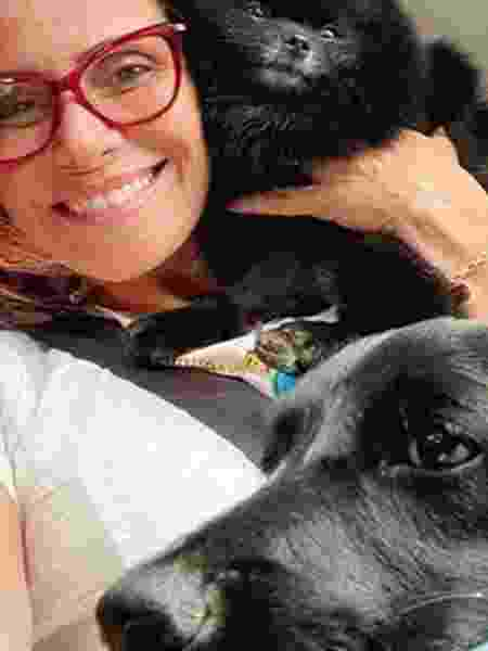 Giovanna Antonelli mostra cachorra adotada - Reprodução/Instagram