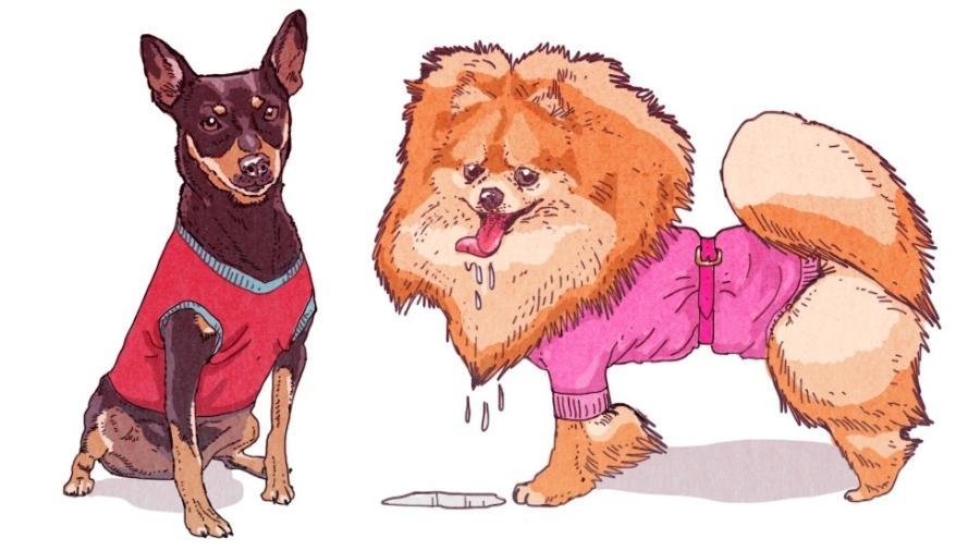 Nem toda raça de cachorro precisa usar roupinhas, mesmo no frio - Caio Borges/UOL