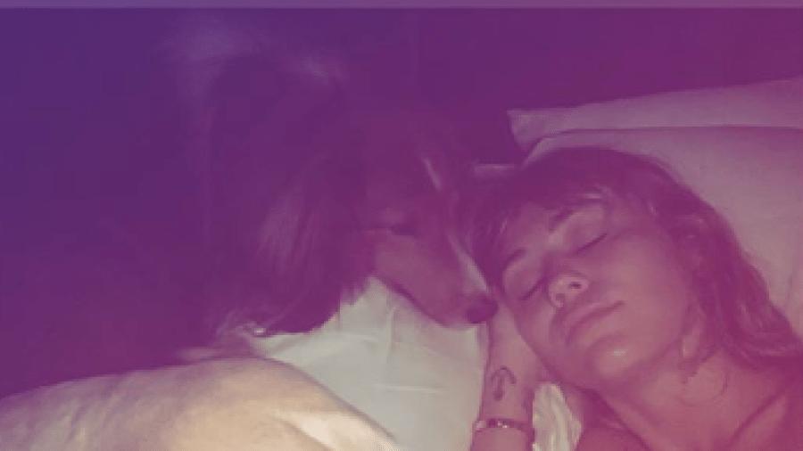 Miley Cyrus aparece com cachorros em foto - Reprodução/Instagram