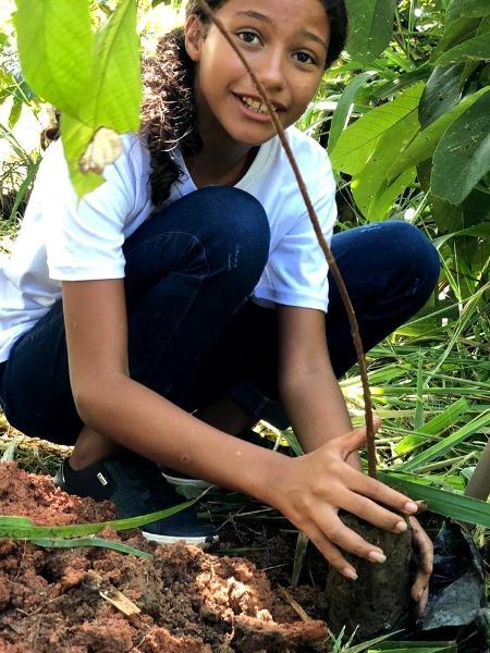 Embaixadores da Justiça Climática da Plant-for-the-Planet participam de plantio de árvores - Divulgação