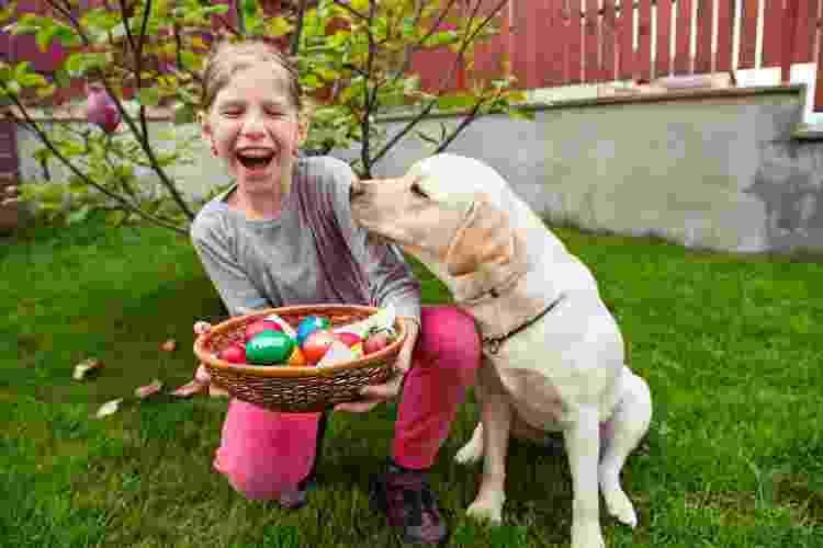 Deixe os pets fora da brincadeira de encontrar ovinhos de chocolate - Getty Images - Getty Images